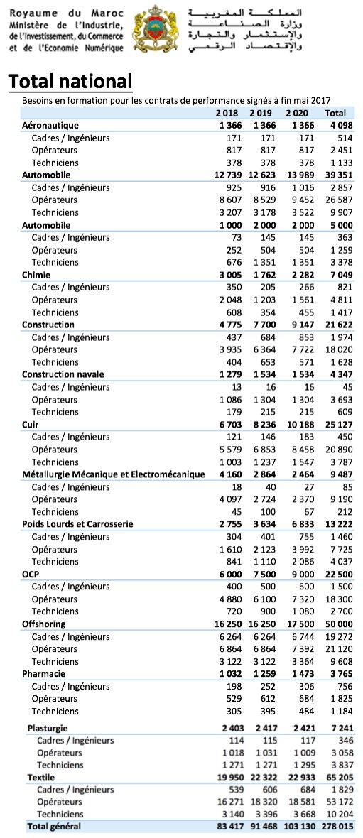 حاجيات تكوين الموارد البشرية المبرمجة في أفق 2020 المغرب